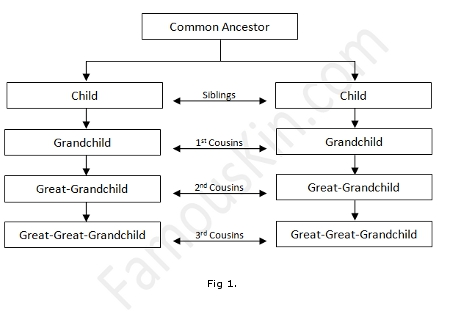 Starting with the grandchildren being first cousins each succeeding